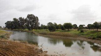 Vista de las zonas verdes del parque.  Foto: Victoria Hidalgo