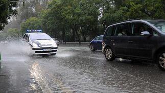 La Avenida de María Luisa, cubierta de agua.  Foto: Juan Carlos Vázquez