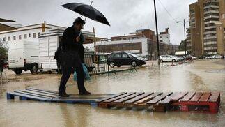 Viento y lluvia por toda Sevilla.  Foto: Juan Carlos Muñoz