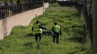 Marta del Castillo Casanueva, desaparecida desde el 24 de enero