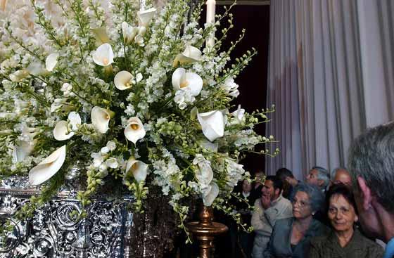 Detalle de las flores de la Esperanza de Triana.  Foto: Manuel Gómez