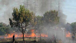 Plano general de la zona incendida.  Foto: B. Vargas
