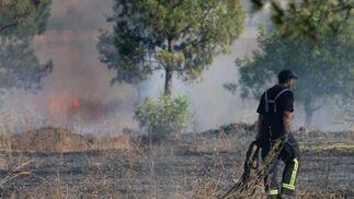 Un bombero retira algunos rastrojos en una de las zonas arrasdas por el fuego.  Foto: B. Vargas