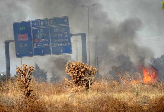 Uno de los brotes del fuego a pie de la autovía de Utrera.  Foto: B. Vargas