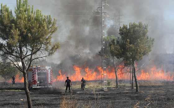 Un cordón de fuego provoca una gran humareda.  Foto: B. Vargas