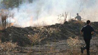 Una de las zonas arrasadas por el fuego.  Foto: B. Vargas