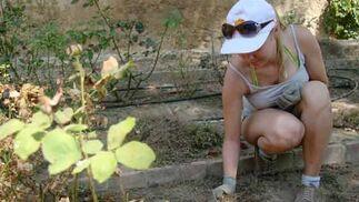 Una jardinero prepara el suelo para la proxima plantación  Foto: Belén Vargas