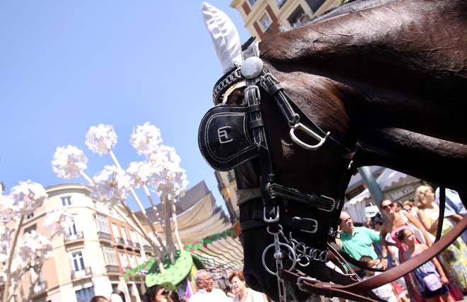 Los caballos fueron sin duda los más aclamados en esta marcha, en la que también ellos lucieron sus mejores galas. FOTO: Migue Fernández