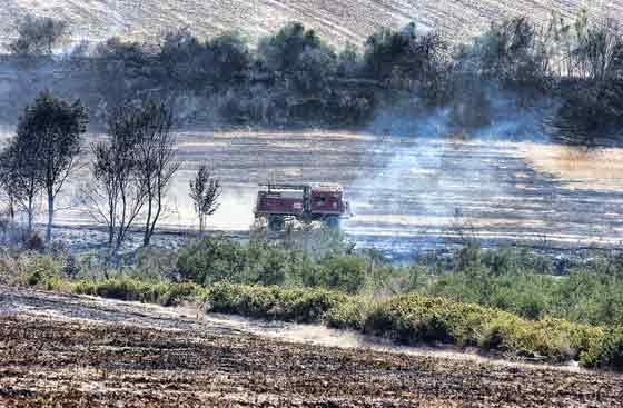 Una unidad de bomberos se adentra entre los pastos.  Foto: Manuel Gómez, EFE