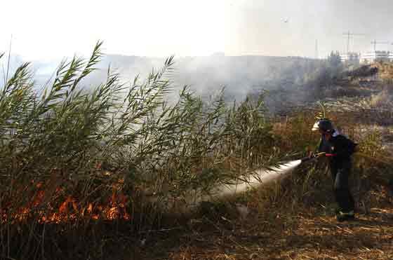 El fuego se originó en una zona de pastos.  Foto: Manuel Gómez, EFE