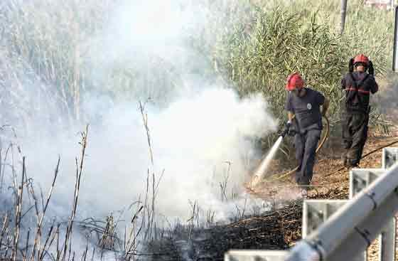 Los profesionales luchan contra el incendio.  Foto: Manuel Gómez, EFE