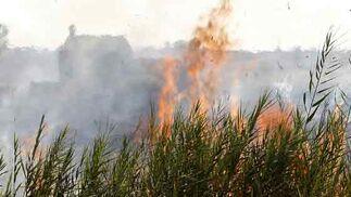 Las llamas fueron las protagonistas de la tarde.  Foto: Manuel Gómez, EFE