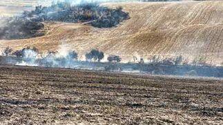 El fuego se volvió a reactivar un día después de primer incendio.  Foto: Manuel Gómez, EFE