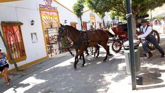 Los carruajes y engaches de caballos disfrutaron durante el día del Real. FOTO: Migue Fernández