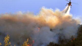El incendio en Grecia amenaza Atenas