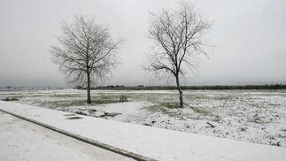 Bonita estampana invernal de la localidad de Gerena.  Foto: Juan Carlos Muñoz, Manuel Gómez, Antonio Pizarro