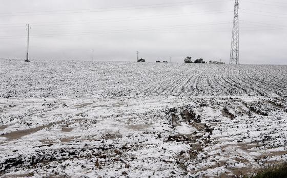 Los campos de Guillena, nevados.  Foto: Juan Carlos Muñoz, Manuel Gómez, Antonio Pizarro