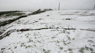 La nieve cubrió Olivares.  Foto: Juan Carlos Muñoz, Manuel Gómez, Antonio Pizarro