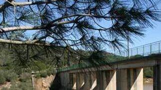 Presa del Celemín, cercana a la localidad gaditana del Benalup