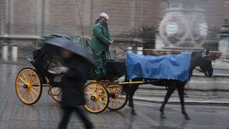 Los coches de caballos continuaron circulando a pesar de las precipitaciones.  Foto: Victoria Hidalgo