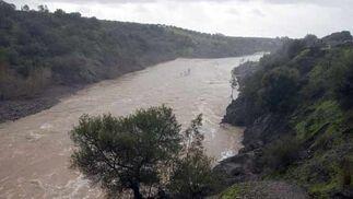 Crecida del Río Guadalquivir  Foto: Manuel Gómez