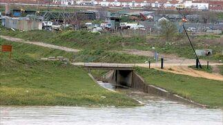 El Guadalquivir en Camas  Foto: Manuel Gómez