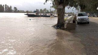 Paseo fluvial de Coria del Río  Foto: Manuel Gómez