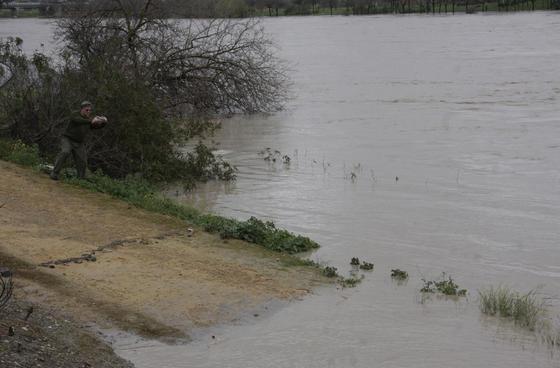 El río alcanza grandes niveles en San Juan de Aznalfarache.  Foto: Victoria Hidalgo
