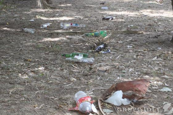 Cantidad de cristales y plásticos que se observan por todas partes.  Foto: Paco Guerrero