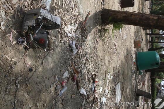 Chatarra y basura frente a los árboles del parque.  Foto: Paco Guerrero