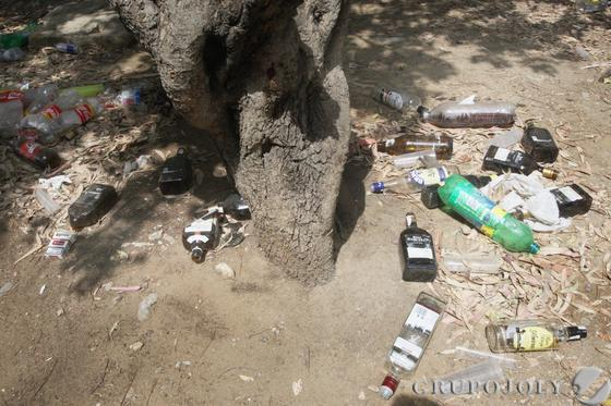Cristales y plásticos dejados allí, al sol, a los pies de un árbol.  Foto: Paco Guerrero