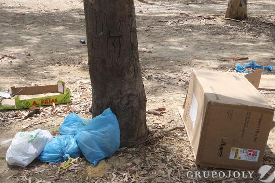 Diverssas cajas de cartón y bolsas de basuras alrededor de un árbol.  Foto: Paco Guerrero