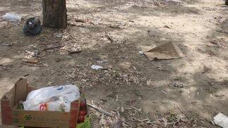 Imagen de cajas de hortalizas que han sido allí abandonadas.  Foto: Paco Guerrero