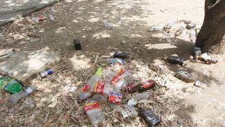 Plásticos acumulados en el suelo del parque.  Foto: Paco Guerrero