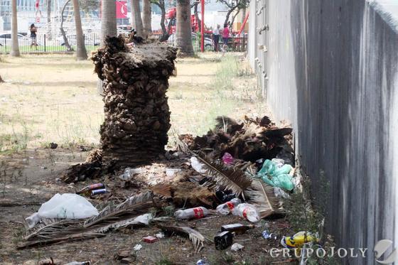 Triste imagen de la suciedad que abunda en el parque tras la Velada.  Foto: Paco Guerrero