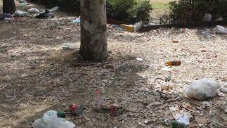 Troncos de árboles rodeados de basura.  Foto: Paco Guerrero