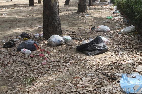 Más bolsas de basuras repletas, inundan el entorno de los árboles.  Foto: Paco Guerrero