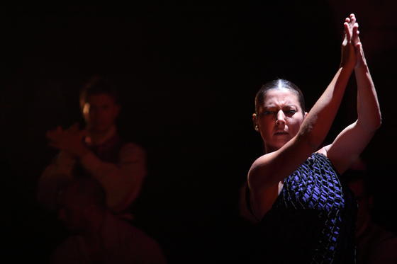 Las imágenes de las muestras del Festival de Teatro  Foto: Teatro Cervantes