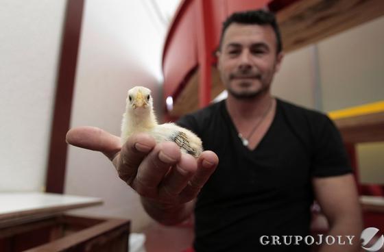 Foto: Fito Carreto