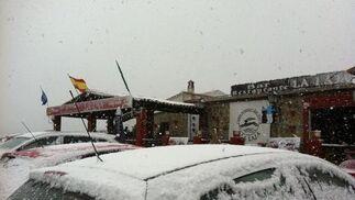 Coches cubiertos por la nevada.  Foto: J. Flores