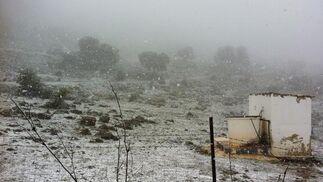 EL campo teñido de blanco.  Foto: J. Flores