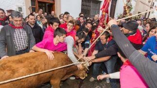Las imágenes de las fiestas populares y tradicionales en Ohanes