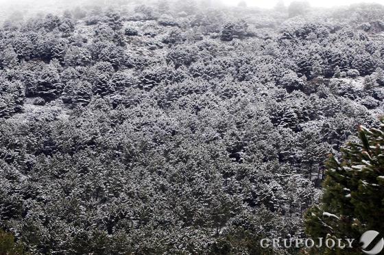 Sierra del Pinar  Foto: Ramón Aguilar