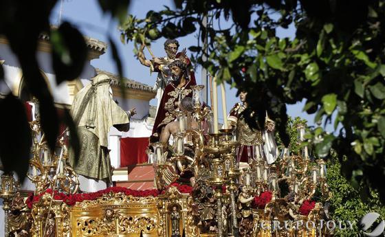 El Señor de la Coronación entre los naranjos en flor que presiden su salida en la calle Arcos.  Foto: Miguel Angel Gonzalez