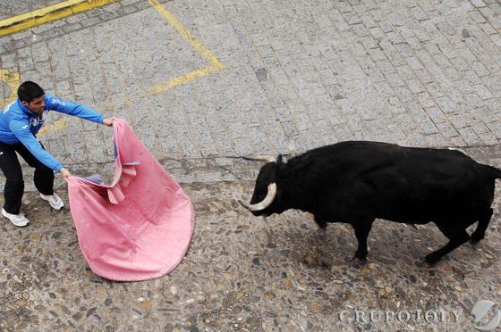 Un hombre resultó herido grave por una fuerte cornada en el abdomen en Arcos. Vejer, Paterna o Benamahoma también vivieron su fiesta  Foto: Ramon Aguilar