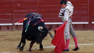 Morante quiso mucho con su tercero, pero no encontró toro.  Foto: Manuel Aranda