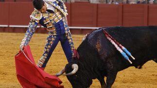 Quinto toro  Foto: A. Pizarro