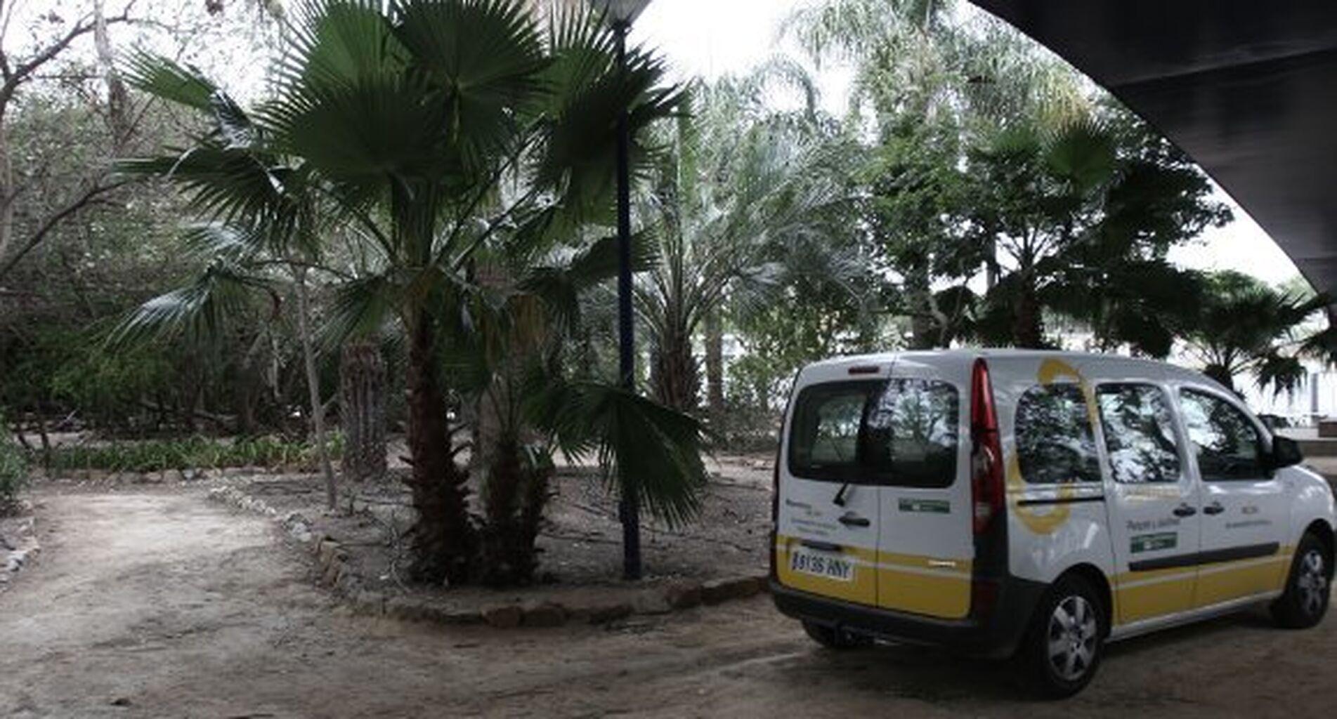 El nuevo contrato de zonas verdes incluye la plantación de 5.800 árboles