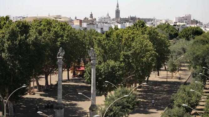 Próximas salidas. Plazas agotadas para la ruta en bicicleta por la dársena del Guadalquivir de mañana. La Alameda de Hércules será el espacio a visitar el próximo sábado 18 de marzo (aún hay plazas disponibles).