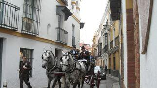 Los mejor del Concurso Internacional de enganches de Sevilla